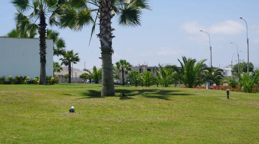 Foto 14 Vista parcial de áreas verdes